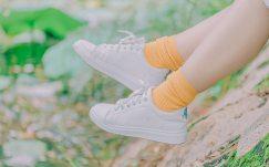 blurred-background-casual-close-up-1437149.jpg